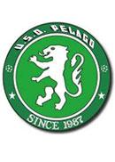 USD_pelago_team